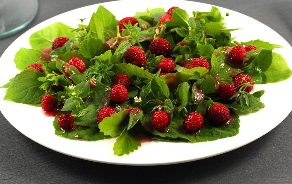 Rezept: Wildkräuter-Erdbeer-Salat
