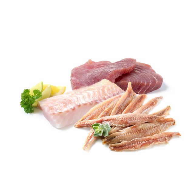 lysinhaltigen-lebensmittel-fisch