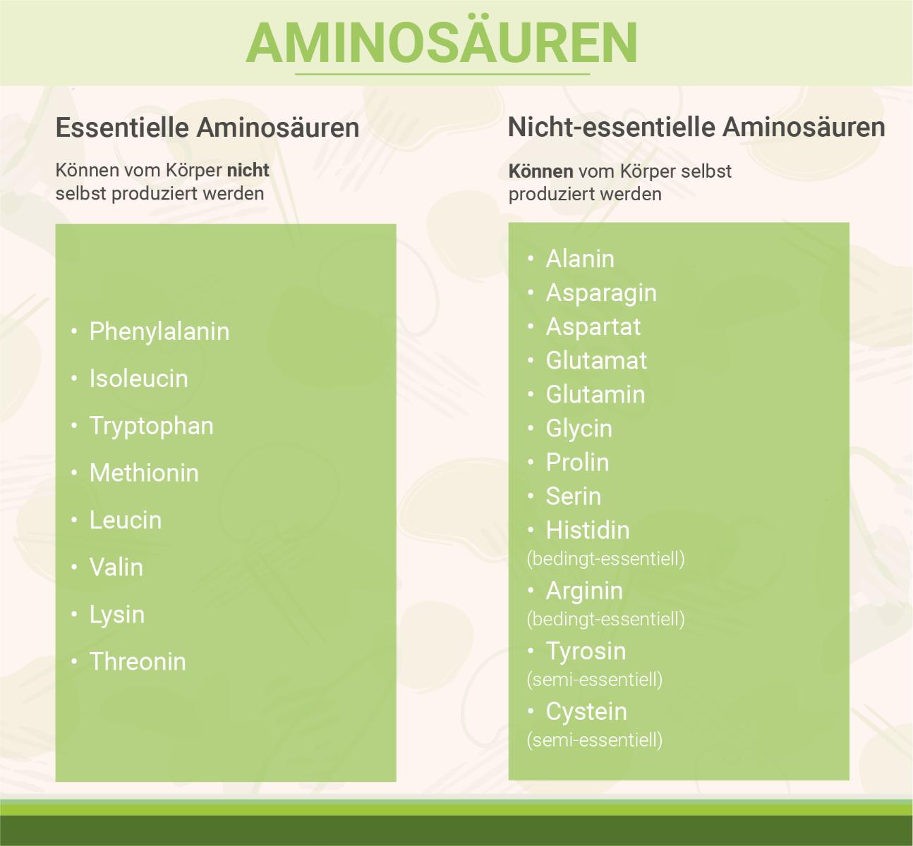infografik-essentielle-aminosaeuren-nicht-essentielle-aminosaeuren