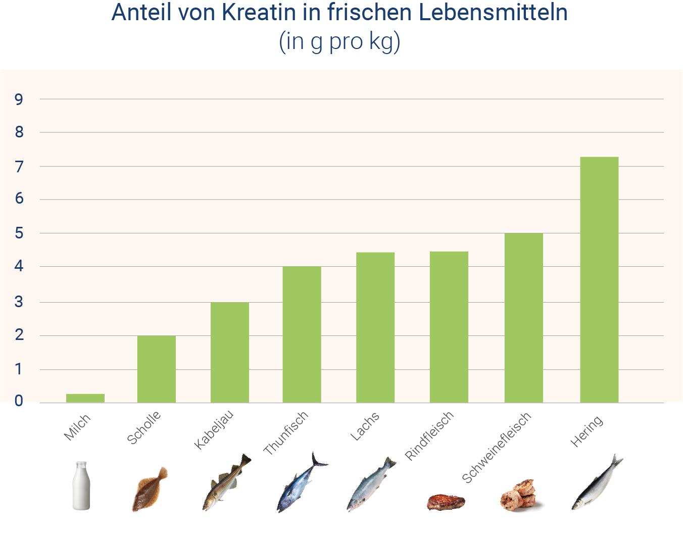 infografik-anteil-von-kreatin-in-frischen-lebensmitteln
