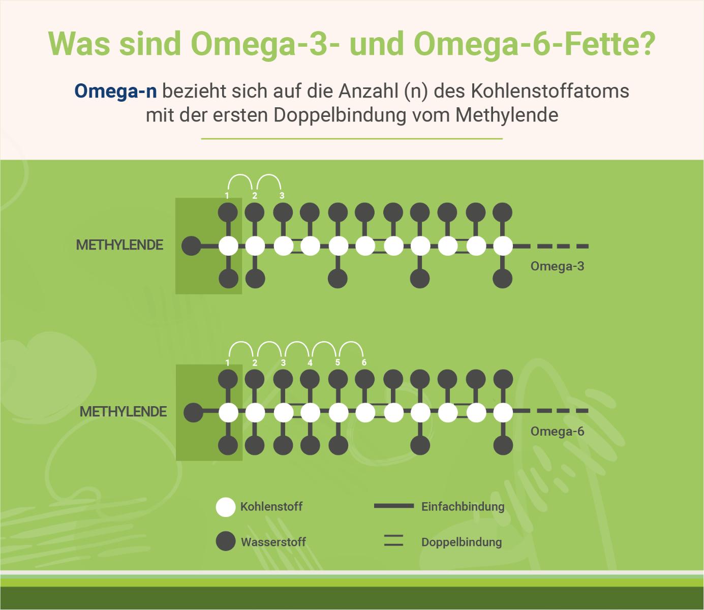 infografik-was-sind-omega-3-und-omega-6-fette