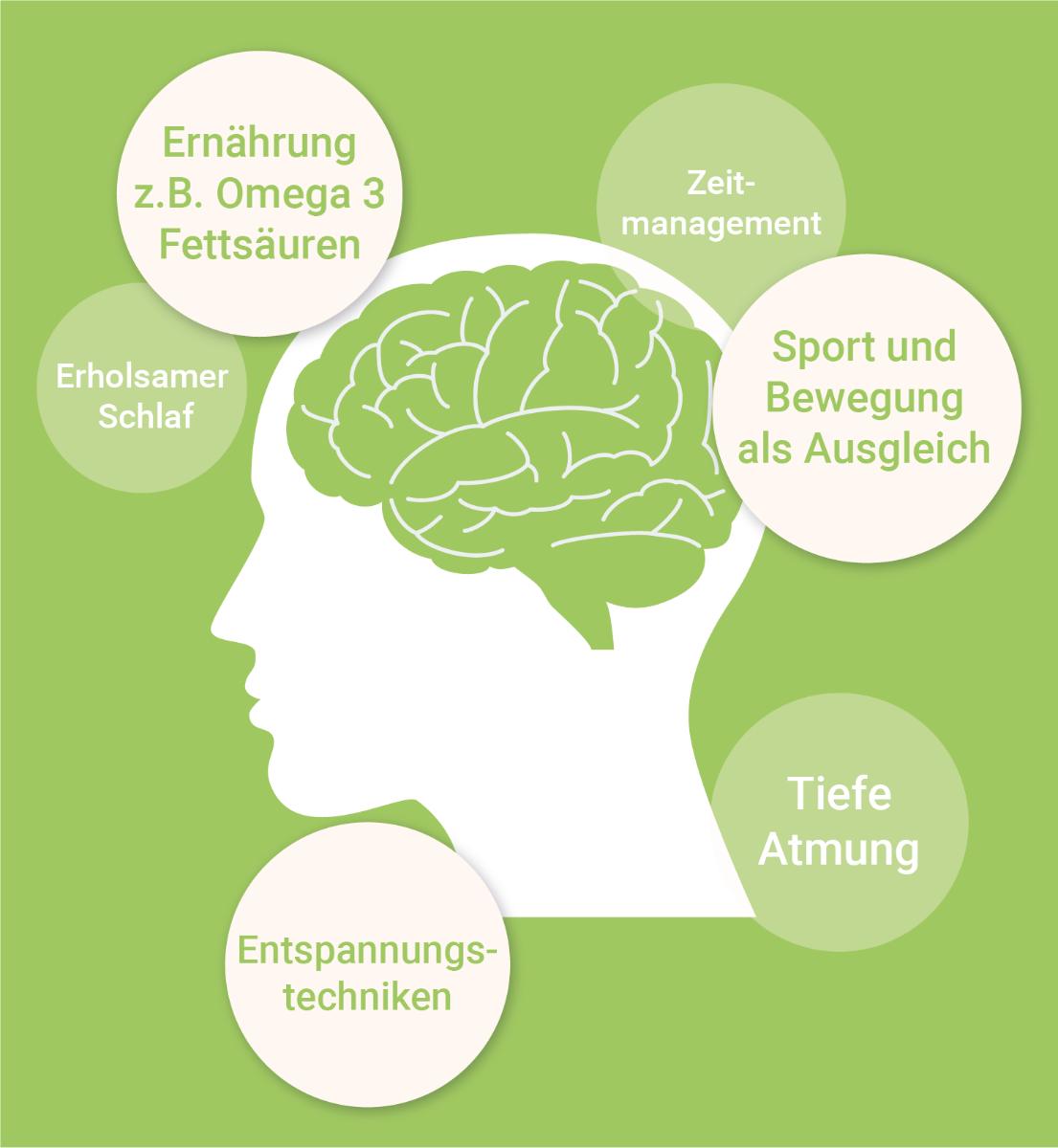 infografik-stressmanagement-omega-3-wirkung