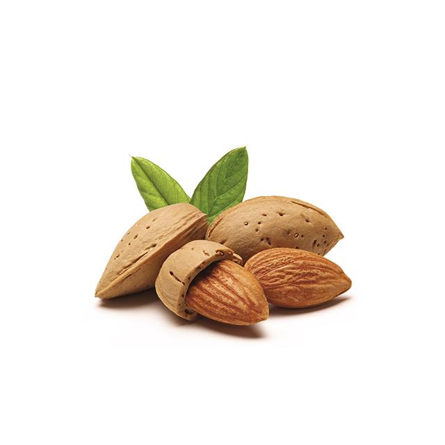 Phenylalaninhaltige-Lebensmittel-mandeln