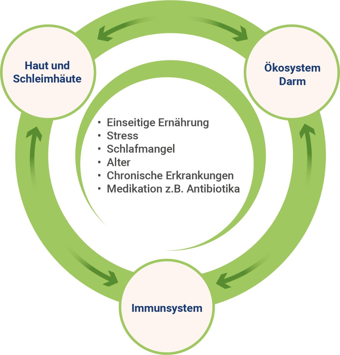 schwaches-immunsystem-ursachen