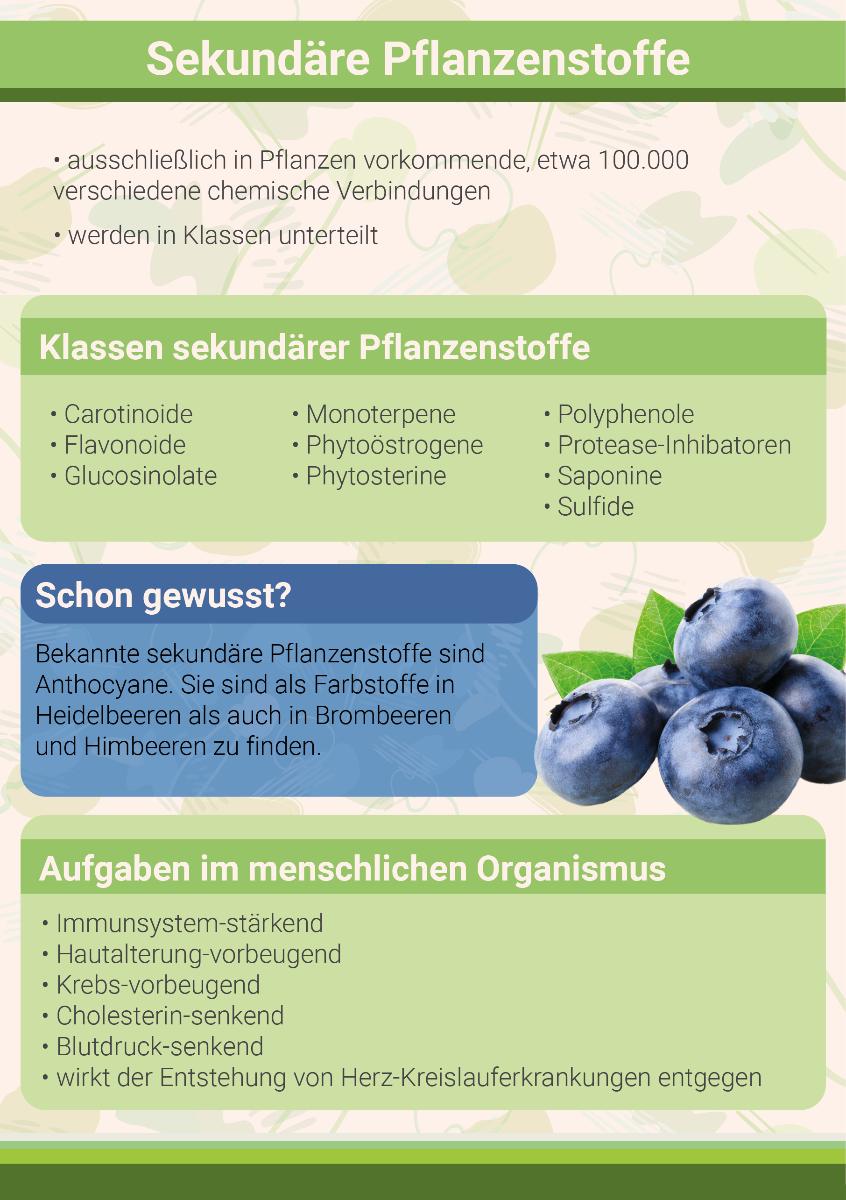 sekundaere-pflanzenstoffe-und-ihre-aufgaben-im-menschlichen-organisumus